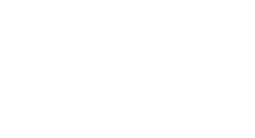 Vinik Sports Group